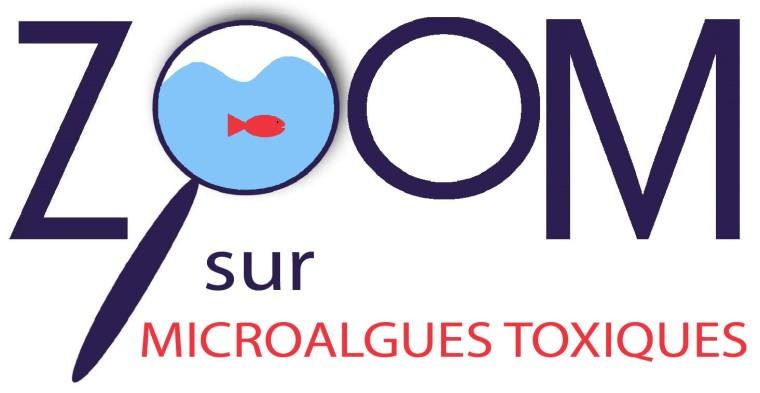 zoom-sur-microalgues-toxiques